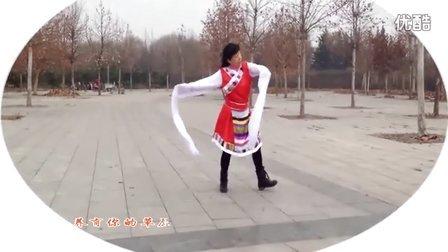 梦娟藏族广场舞蹈《卓玛》