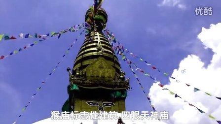 尼泊尔之旅 加德满都猴庙(斯瓦扬布纳特寺)修行的圣猴