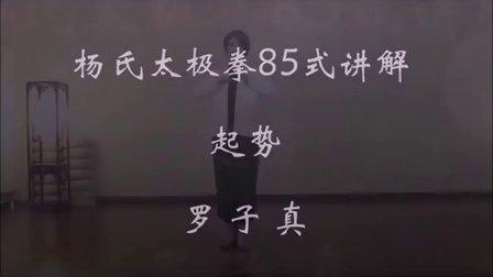 传统杨氏太极拳85式讲解(一)起势-罗子真-子真太极