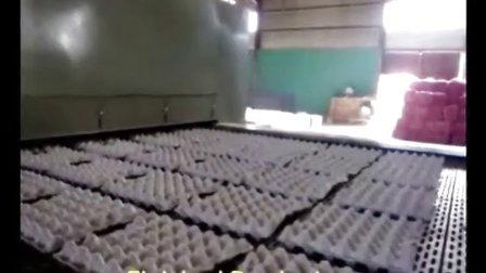 必硕科技纸浆模塑全自动往复蛋托生产线