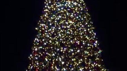 上海迪士尼圣诞树梦幻亮灯仪式🎄