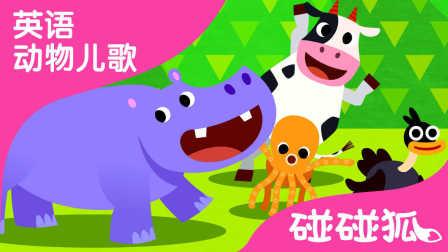 Animal Action | 英语动物儿歌 | 碰碰狐!英语动物儿歌