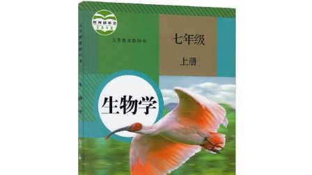 人教版七年级上册生物第三单元第一章第一节藻类苔藓和蕨类植物