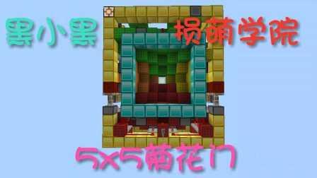 PE 5x5菊花门