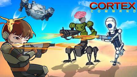 【风笑试玩】机器人也会心态爆炸丨表层指挥 战役模式 直播录像