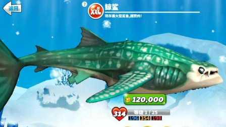 【肉搏快乐】饥饿鲨鱼世界 22鲸鲨XXL型