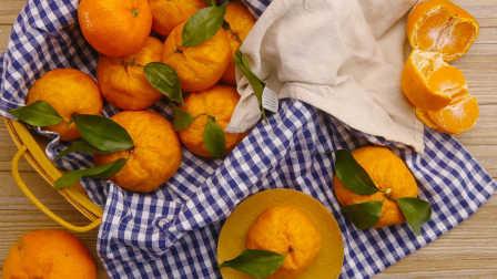 太阳猫早餐 第一季 第229集 以假乱真的橘子馒头 229
