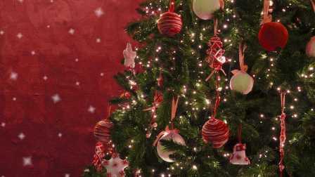 鸡蛋狂魔-如何装饰圣诞树