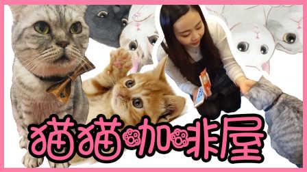 超萌的猫猫咖啡屋!零距离接触喵星人! | 小伶玩具