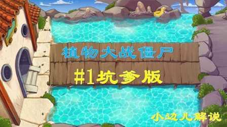 【小边儿解说】坑爹版植物大战僵尸第1集
