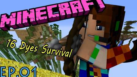 [FXB 插 梁正群]Minecraft 我的世界 16 Dyes Survival16染料空岛生存EP.01 神棍梁正群