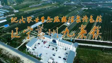 现代农业生态旅游温泉特色镇——辽宁盖州九寨镇形象片