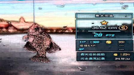 【肉搏快乐】钓鱼发烧友 10黑太阳鱼