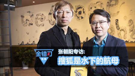 专访张朝阳,搜狐是水下的航母