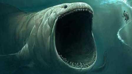 【逍遥小枫】我长大了连鲨鱼都敢一口吞!食草鱼的崛起! | 海底大猎杀(Fish Sim)#18
