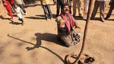 印度通天绳的原理演示 原来这么简单