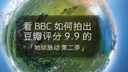 看 BBC 如何拍出豆瓣评分 9.9 的「地球脉动 第二季」