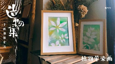 《造物集》植物晕染画