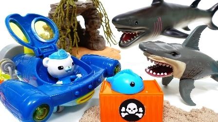 海底小纵队 游乐场 和悦悦的玩具 巴克队长 鲨鱼岛 海底探险队卡通玩具 呱唧猫 达西西 皮医生 海底救援队 巴克队长 动画制作海底小英雄