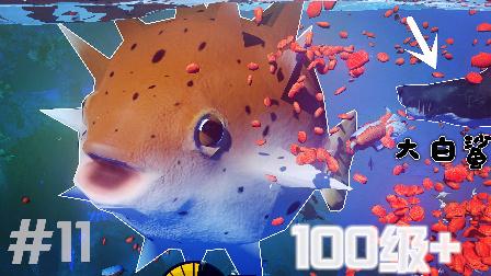 【XY小源】海底大猎杀 第11期 100级+巨型河豚 无限吃大白鲨BUG
