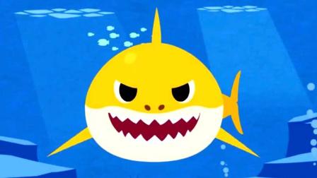 碰碰狐 鲨鱼一家 02 海底鲨鱼世界 学前儿童教育 儿童有趣游戏 亲子互动游戏 益智游戏 早教游戏
