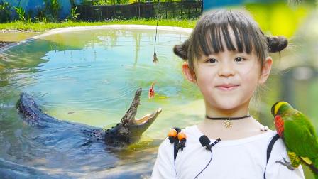 野生动物园刺激体验 和动物亲密接触险被毁容 51