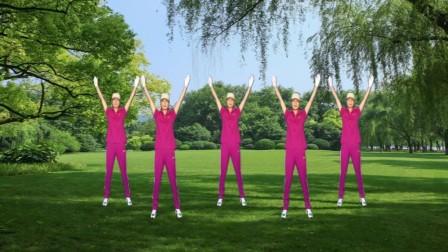 2017年最新健身操河口轻舞飞扬健身操第十套教学版