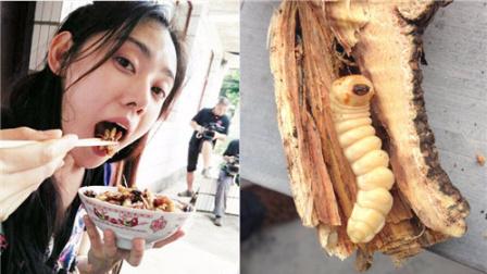 吃虫子!盘点端午节奇葩习俗【笑料百出】296