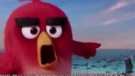 愤怒的小鸟: 成千上万只愤怒的小鸟, 造船去追猪讨蛋