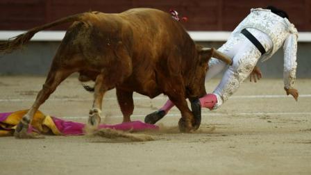 都不敢看了, 最惨烈的斗牛现场, 这头公牛太邪恶了!