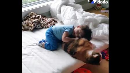 可怜的猫咪, 睡觉睡得好好的, 却被小baby拉过来当枕头了