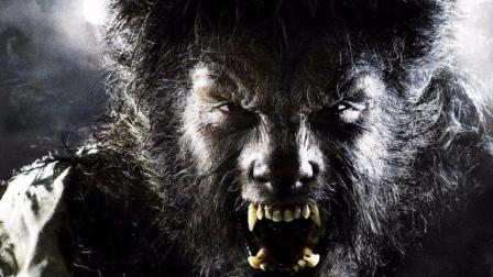 怪兽之谜—狼人