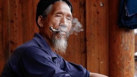 一种农村喂猪的野草, 解决老烟民咽干、口臭口苦、尤其对肺癌!