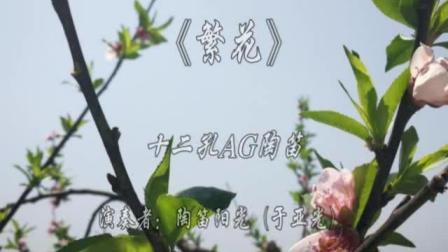 12孔陶笛《繁花》——陶笛阳光