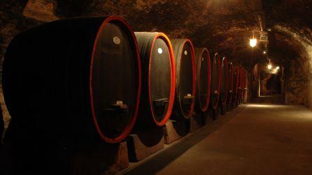 德国葡萄酒系列 - 四大名山之首