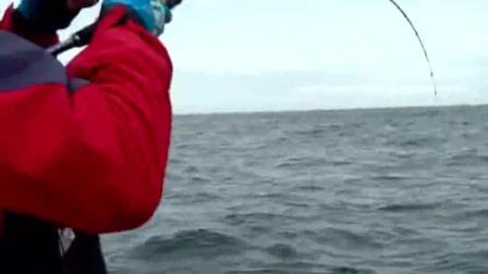 路亚海钓: 教你如何路亚钓海鲈鱼 地点选择和一些技巧方法