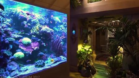 豪华珊瑚缸实拍欣赏海水缸2017.04