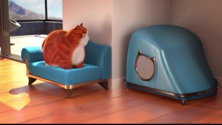一只猫被主人拉着自拍, 折腾到最后的照片太精彩