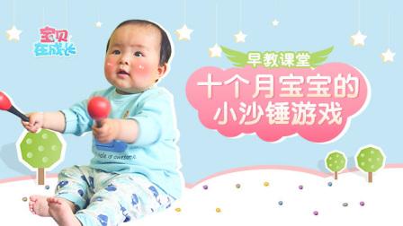 早教课堂: 锻炼十个月宝宝感官的小沙锤游戏