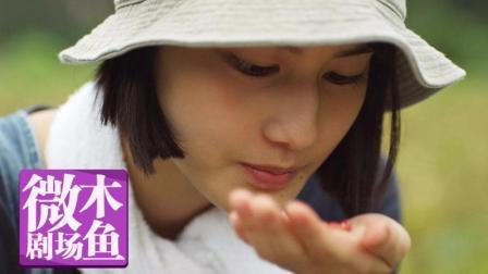 【木鱼微剧场】《小森林冬春篇》
