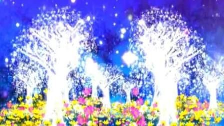 火树银花-视频素材