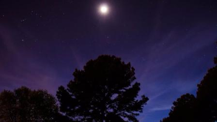 来自心灵深处的音乐『月光』