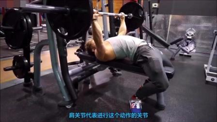 健身型男教你科学的胸肌训练的正确方法