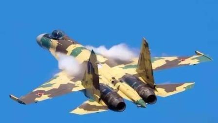 紫龙防务观察 第一季 中国为何购买俄罗斯苏战机?