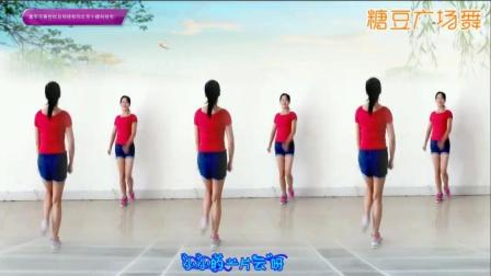 阿采广场舞DJ踏浪 简单16步双人舞