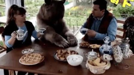 乖巧的熊孩子
