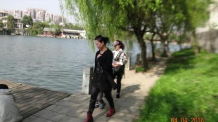 TSH视频田-贵州山歌-青山绿水也欢唱0