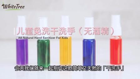2款DIY天然抗菌干洗手液