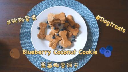 柴柴Haki超爱! 自制狗狗零食蓝莓椰香饼干 好吃到停不下来
