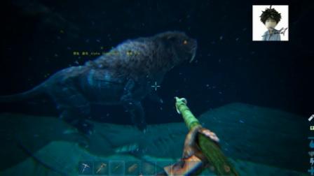 方舟MOD-梦幻岛-P2各种被虐